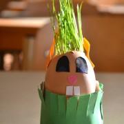 Kuidas seemnest taim saab
