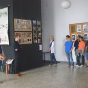 Koostöö Lissaboni Saksa kooliga