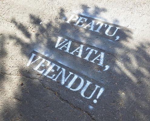 PEATU, VAATA, VEENDU!