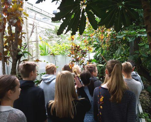 8. klass botaanikaaias