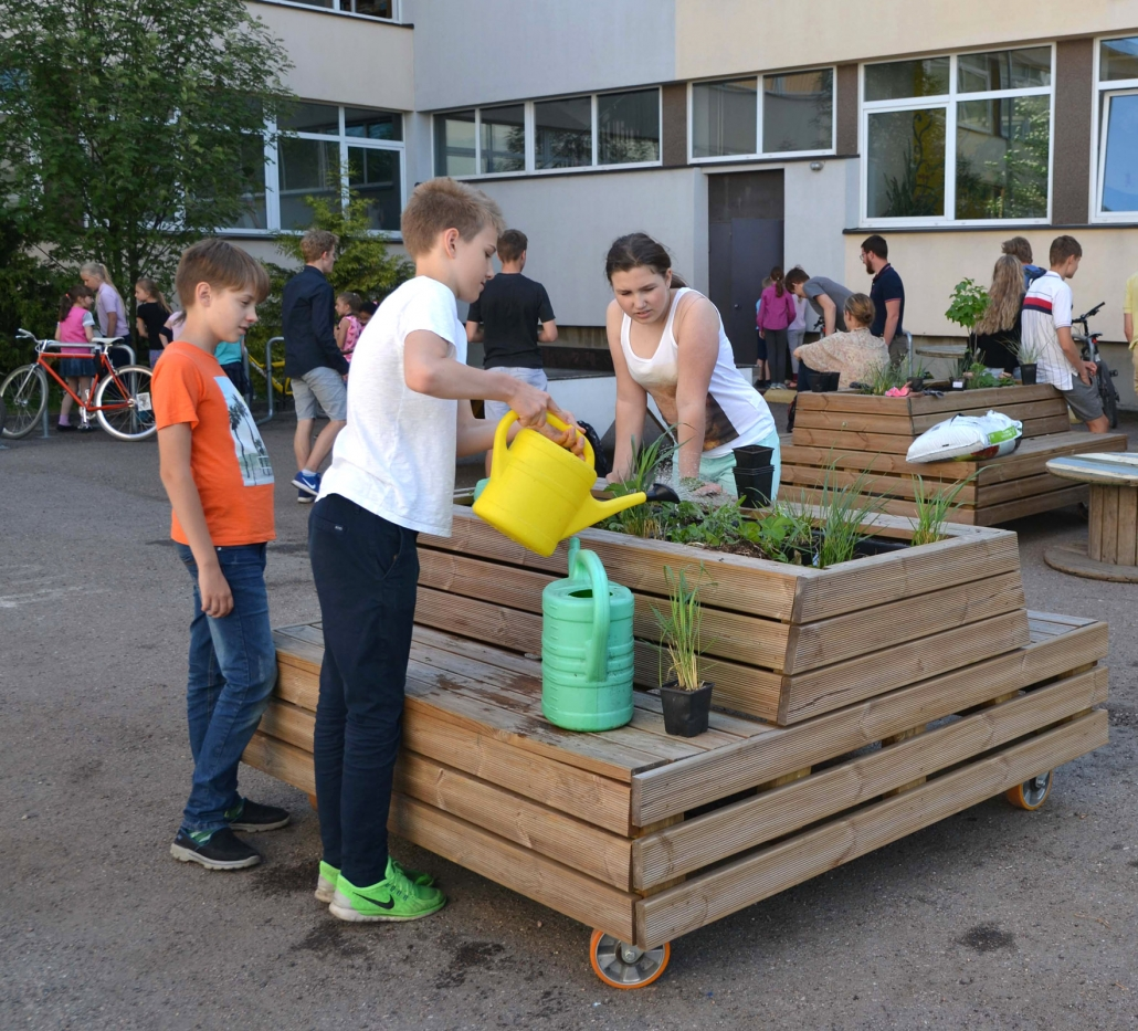 taimede istutamine