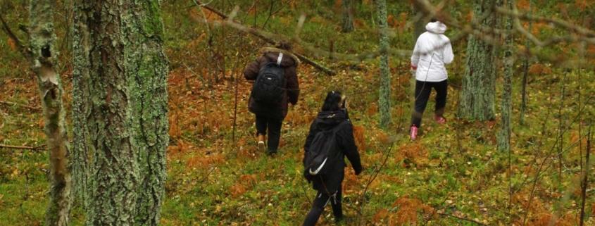 Loodushoiu- ja matkaringi matk Keila-Joale